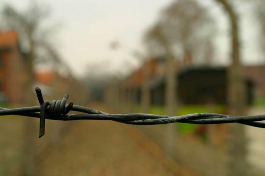 Black Wire in Park