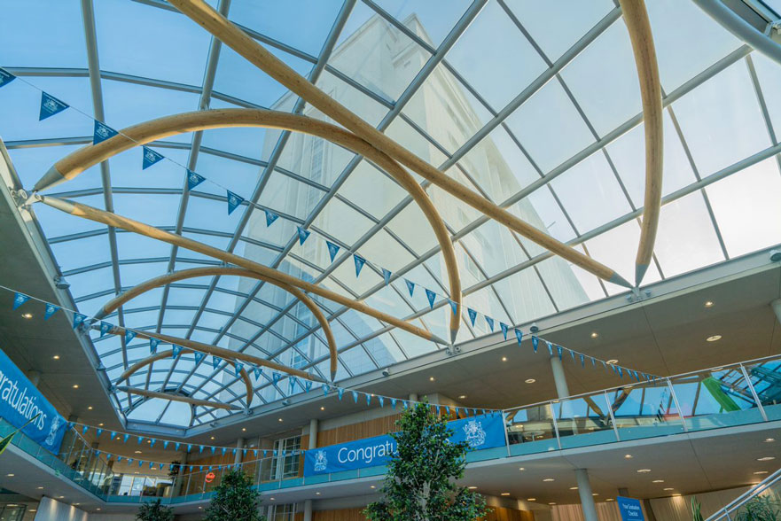 A view of the sky through the Newton roof and graduation bunting.