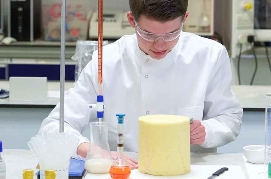 Student undertaking food testing