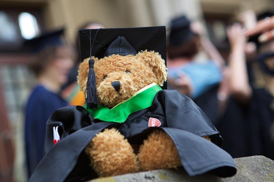 Teddy bear wearing graduation gown