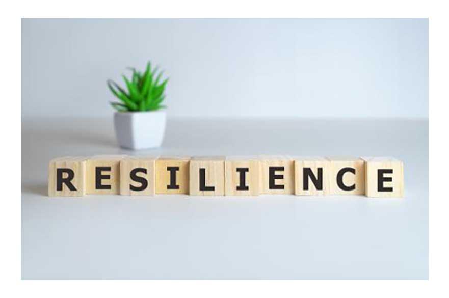 blocks spelling resilience
