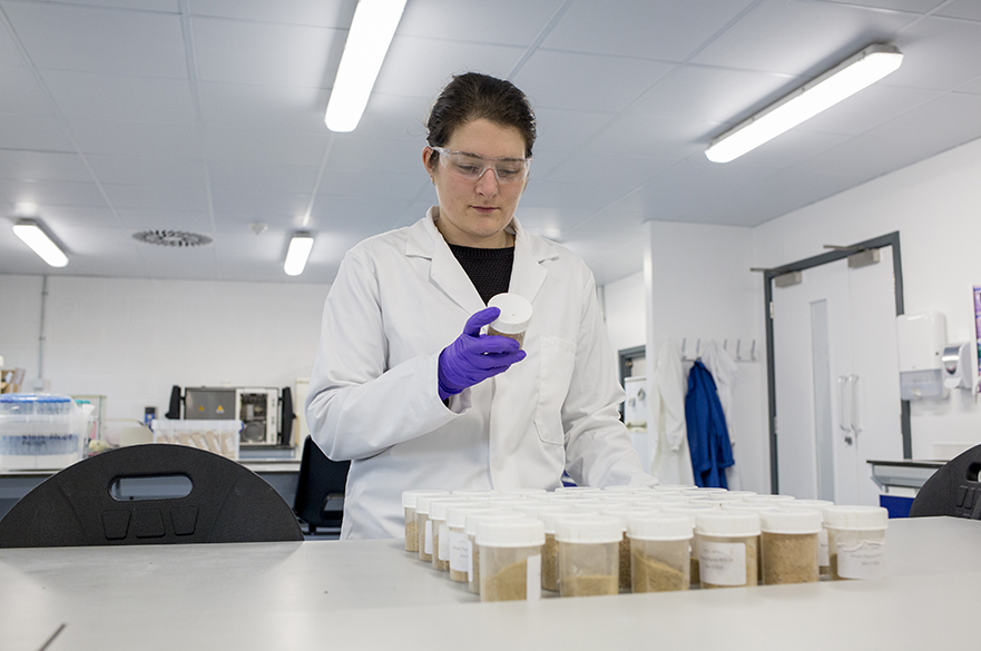 Student analysing food in lab