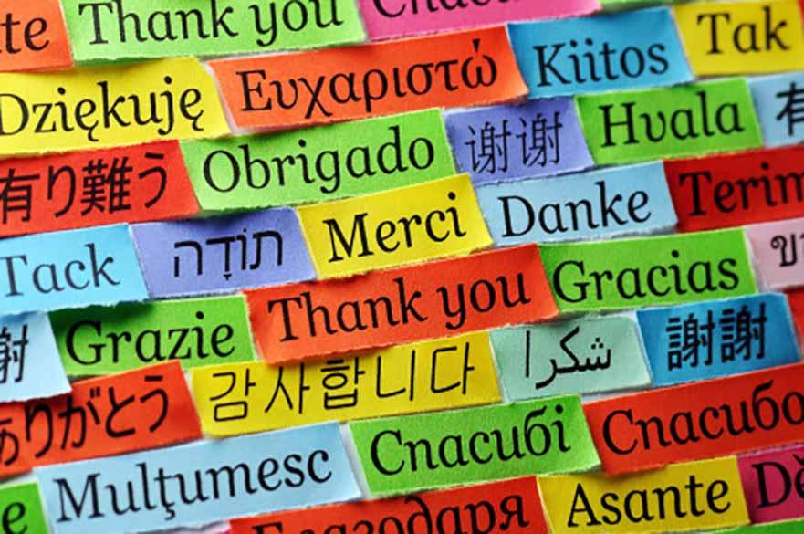 University Language Project