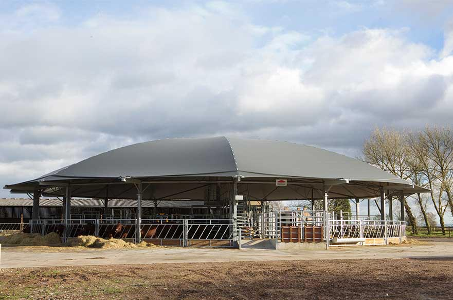 Cattle Roundhouse