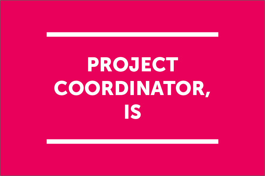 Project Coordinator (IS)