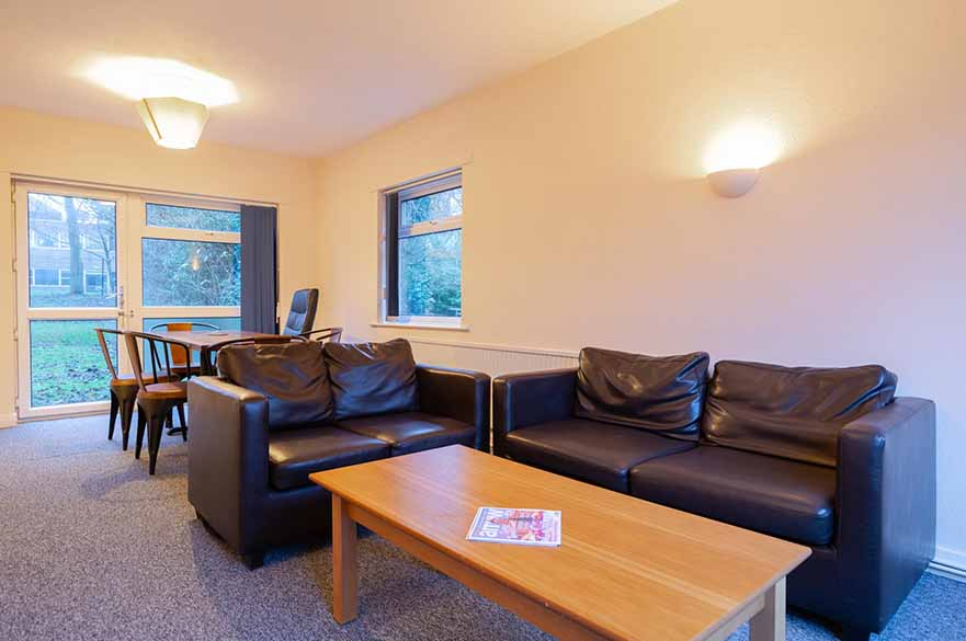 College Drive Living Area image