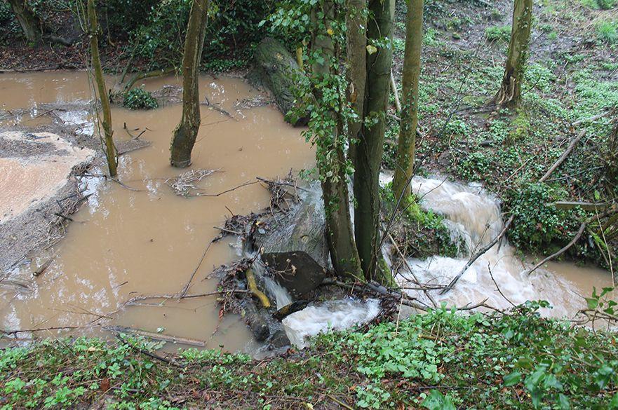 Brack flood management scheme