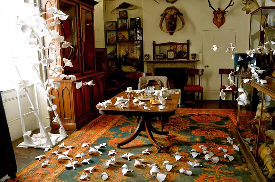 Room with paper birds on floor