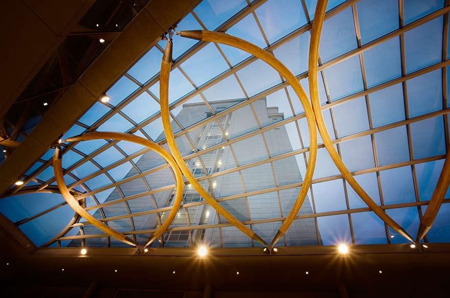 Newton atrium roof