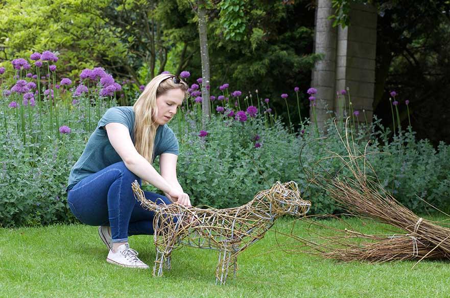 Horticulture garden design fdsc foundation degree for Garden design nottingham