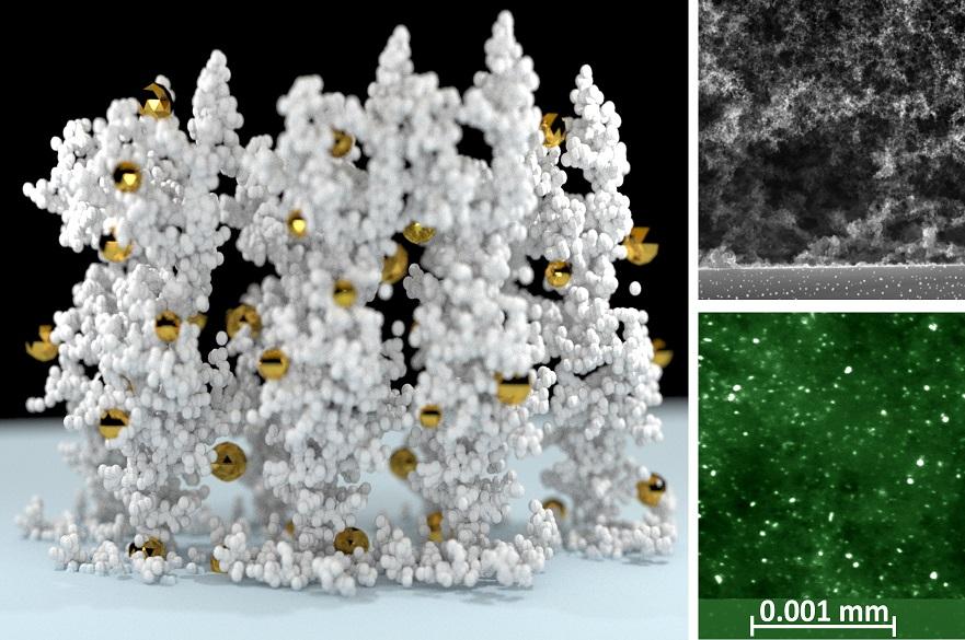 Nanoparticle scaffold