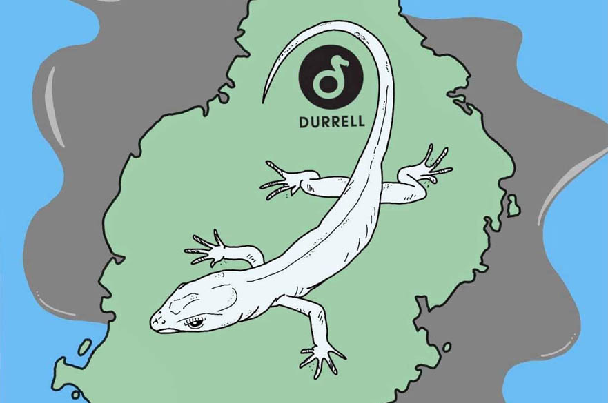 Poster to raise money for Durrell Wildlife