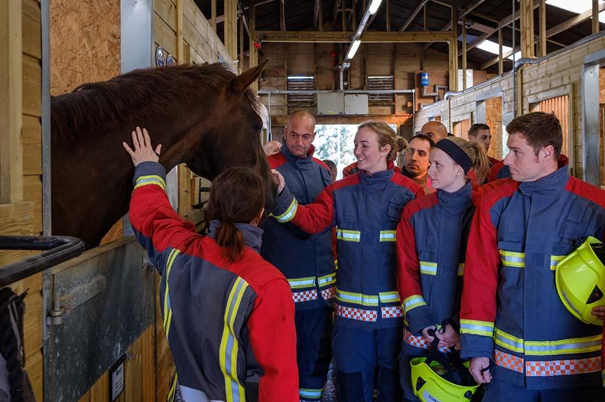 Fire and rescue training at Brackenhurst Equestrian Centre