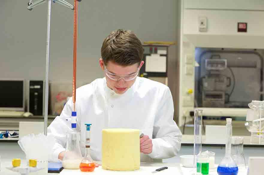 Student working in the food laboratory at Brackenhurst