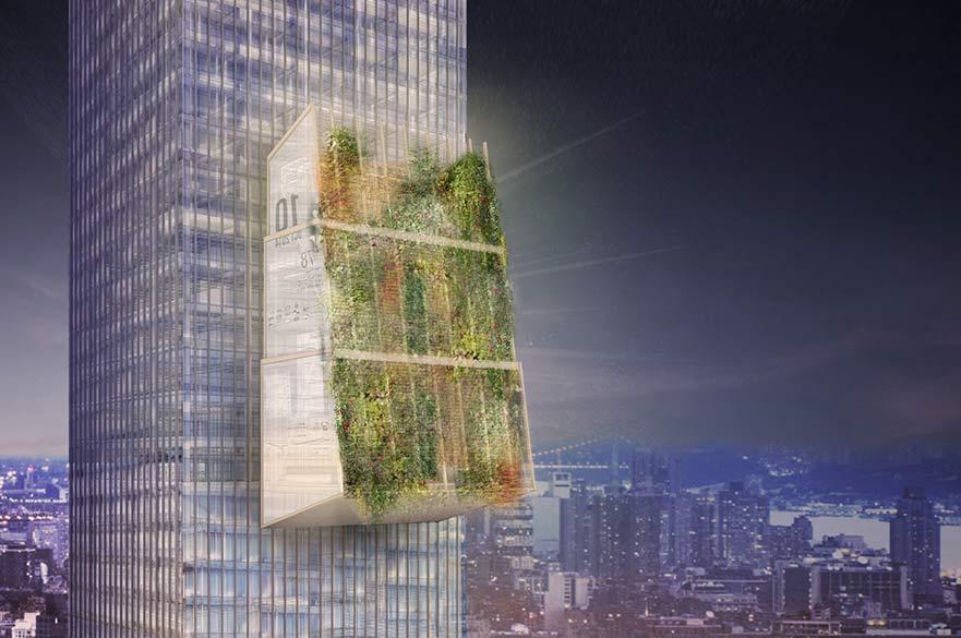 The winning design, the Organic Grid +