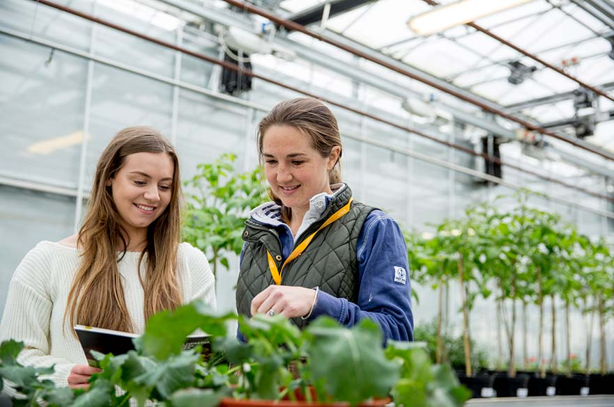 student and lecturer in greenhouse