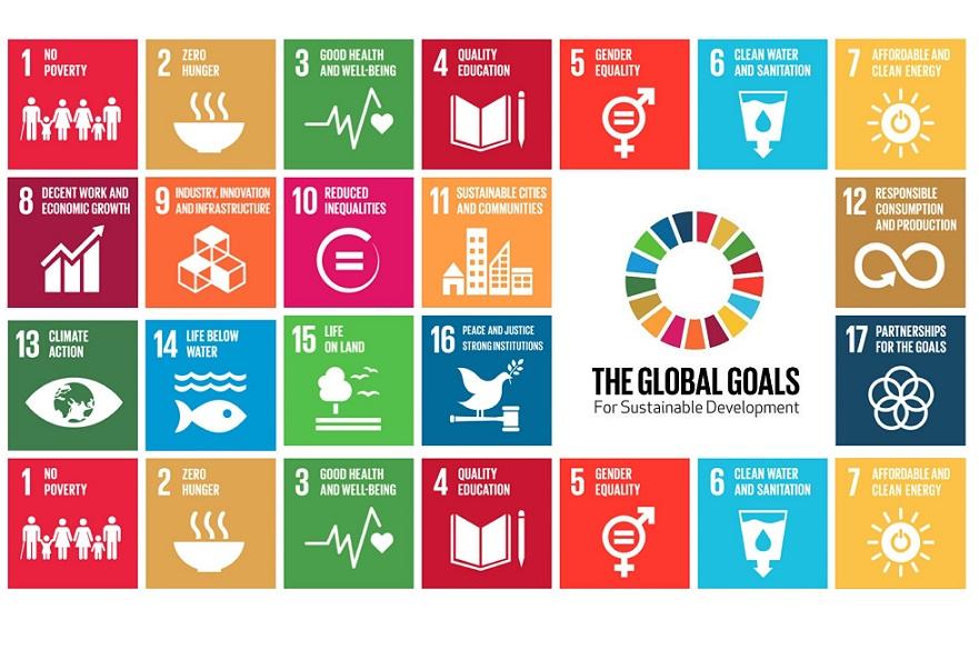 SDG icons
