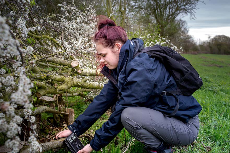 Ecology and Conservation BSc (Hons) Undergraduate Course