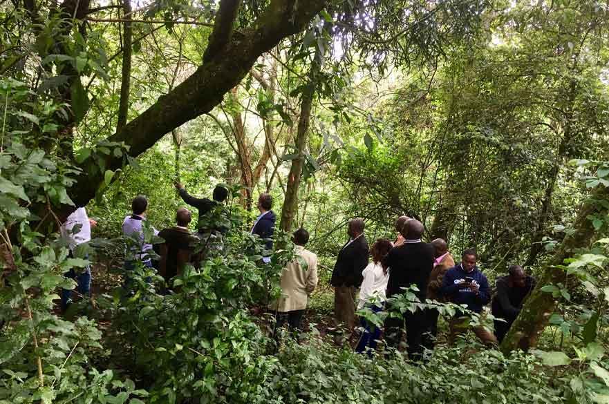 Brackenhurst-Kenya-1.jpg