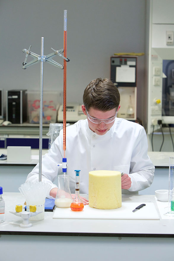 Student in food lab conducting tests