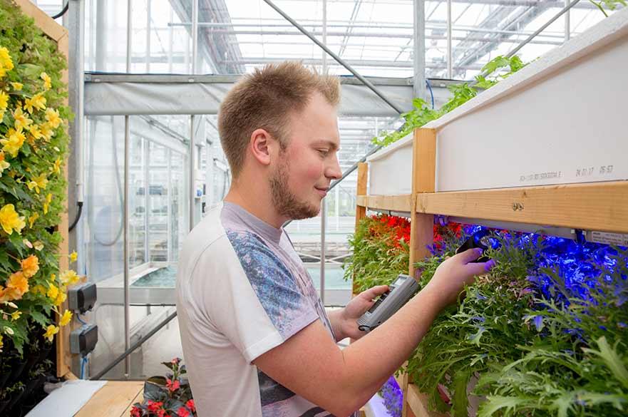 Glasshouse complex plant monitoring