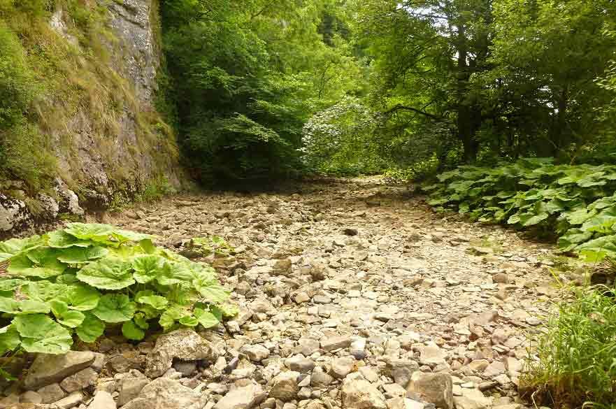 Temporary river