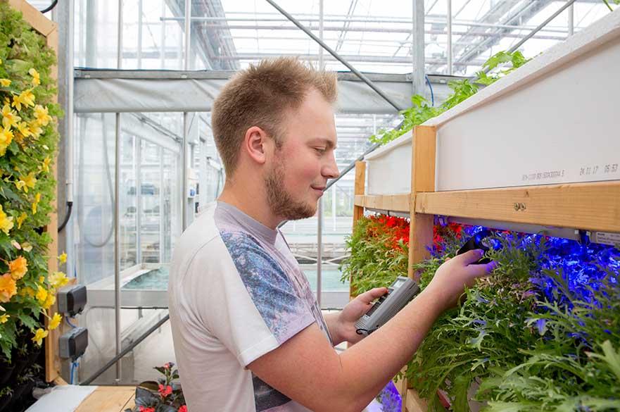 Student using hydroponics