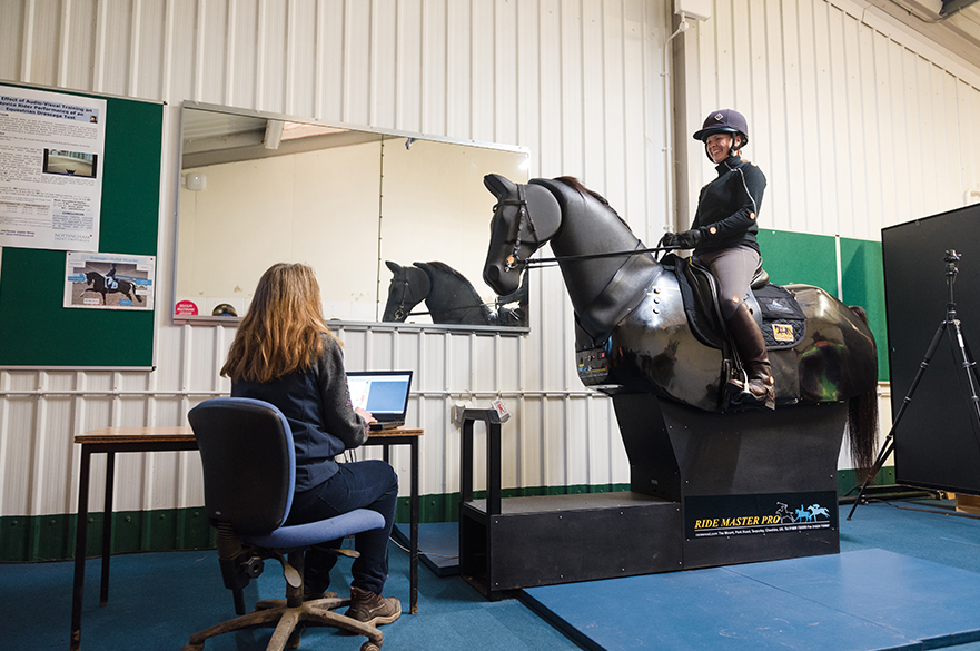 Equine Research in the Performance Analysis Room