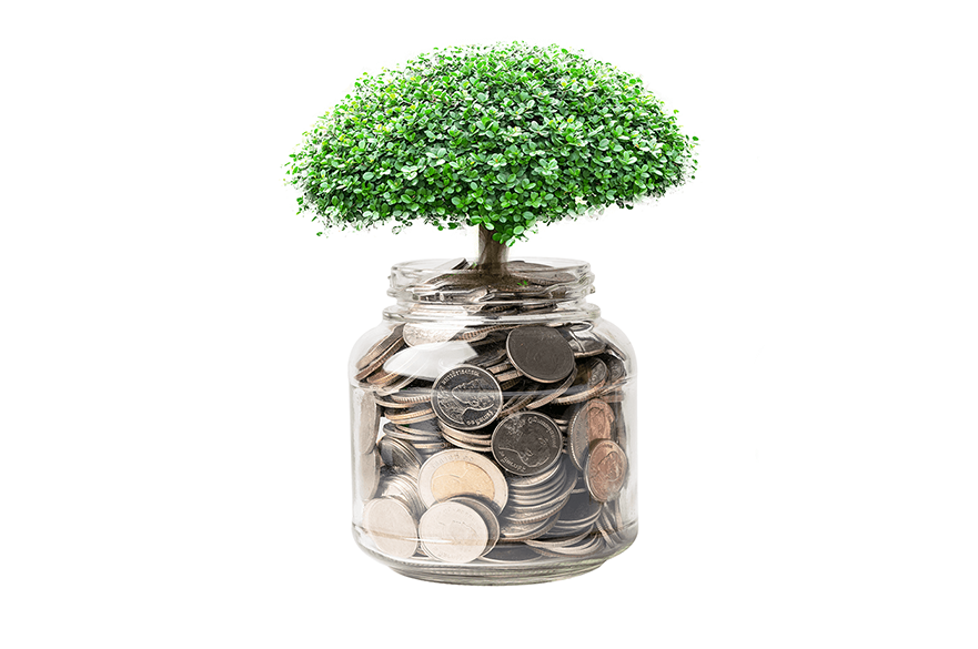 A tree growing out of a pot of money