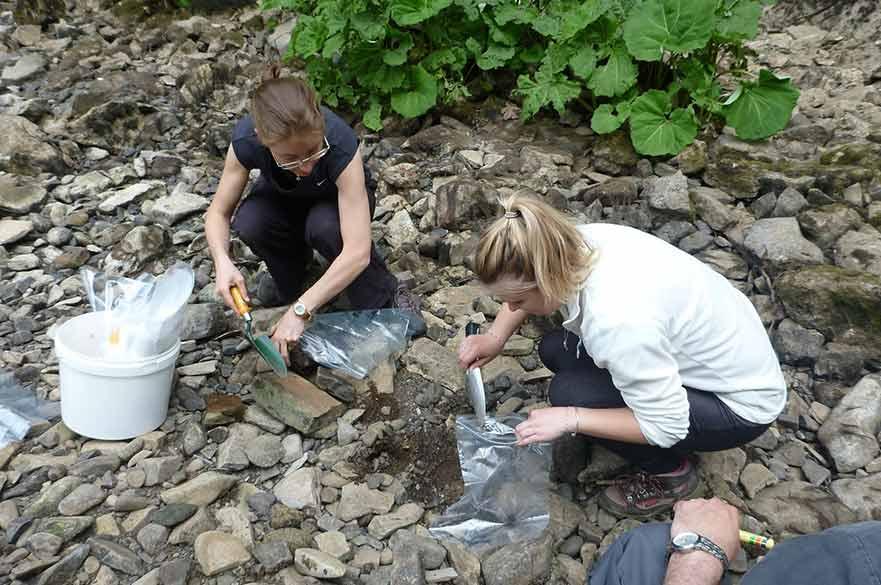 Rachel Stubbington collecting aquatic invertebrates