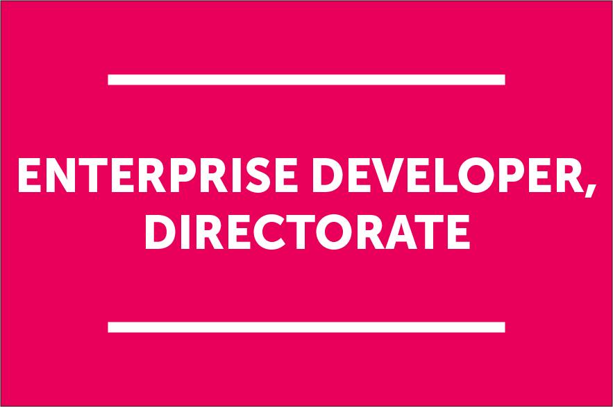 Enterprise Developer
