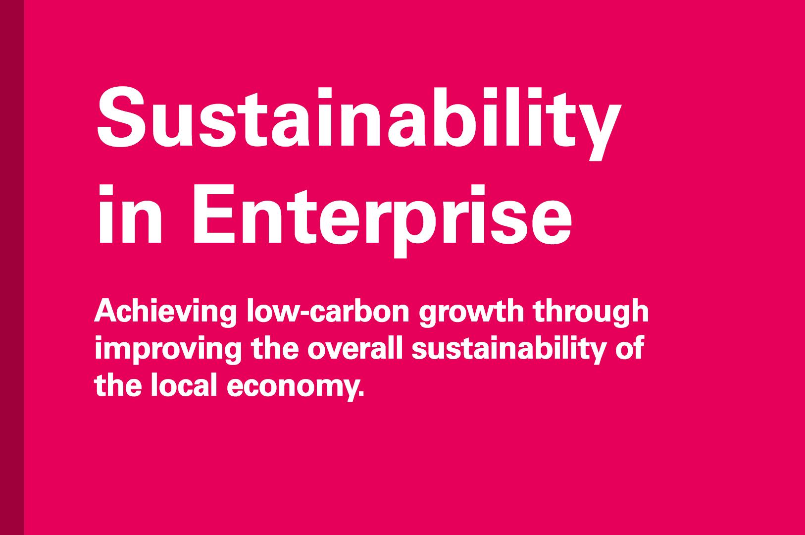 Sustainability in Enterprise
