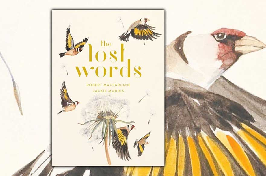 The Lost Words by Robert Macfarlane. Illustrated by Jackie Morris