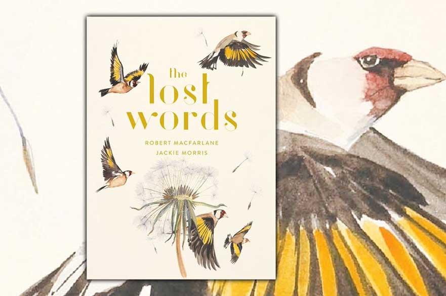 The Lost Words by Robert Macfarlane. Illustrated by Jackie Morris