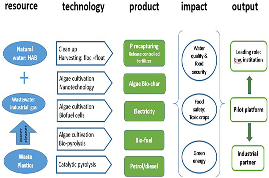 IWEF Research Framework