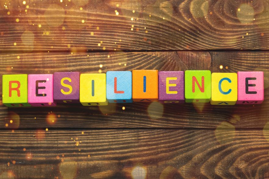 resilience puzzle